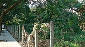 961022除草前會勘照片:DSC00197.JPG