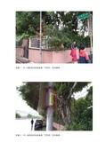 109年10月:10910280117803-研商民眾陳情「文化一路一段-八德路16巷(麗林國小後門)增設照明及人行道整平」一案會勘紀錄(17803)-3.jpg