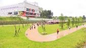 公園:櫻花.jpg