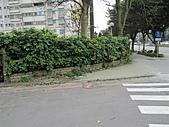 20110408林口區道路會勘東勢、麗園里:IMG_0400 (Large).JPG
