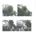 108年11月:11001法國小鎮香草I區-2.jpg