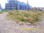 20110211環保局辦理西林里公鄰34會勘:DSCI1032 (Large).JPG