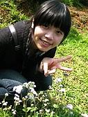 09428油桐花:IMG_0044.JPG