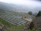 馬那邦山:馬那邦山 (4).JPG