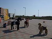 竹圍漁港and滿月圓:DSCF9113.JPG