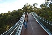 Perth-Kings Park:DSC_7054.JPG