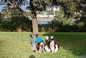 Perth-Kings Park:DSC_7011.JPG