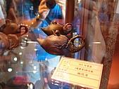 2010南投世界茶博覽會:DSC00090.JPG