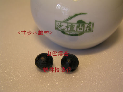 blog_01:P1010481s.jpg