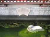 20090316淡水懷舊半日遊:1759838744.jpg