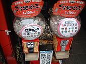 2006日本行之淺草寺參訪篇:DSCF0033