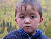 2008新疆北疆之秋(7)-禾木村 :DSCN2560.JPG