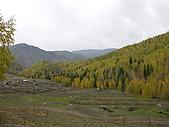 2008新疆北疆之秋(7)-禾木村 :DSCN2567.JPG