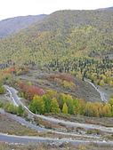 2008新疆北疆之秋(7)-禾木村 :DSCN2540.jpg