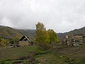 2008新疆北疆之秋(7)-禾木村 :DSCN2568.JPG