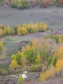 2008新疆北疆之秋(7)-禾木村 :DSCN2542.jpg