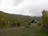 2008新疆北疆之秋(7)-禾木村 :DSCN2569.JPG