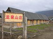 2008新疆北疆之秋(7)-禾木村 :DSCN2581.JPG