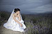 自拍婚紗, 婚紗自拍:自拍婚紗,婚紗自拍 14.JPG