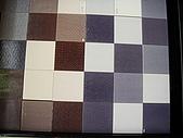 家:哥哥選的浴室磚.JPG