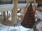 隨意拍:君悅飯店聖誕樹