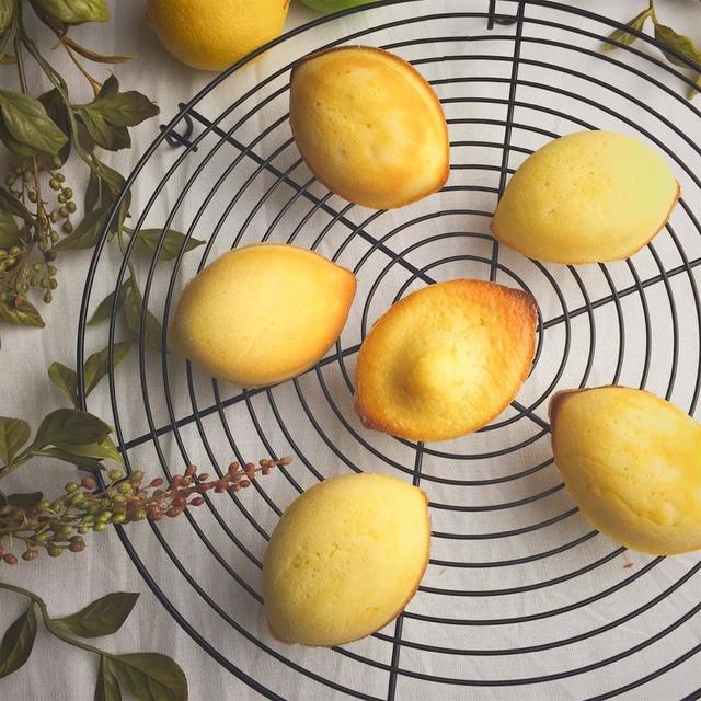 1460972994-3074313855_l.jpg - 古早味檸檬蛋糕