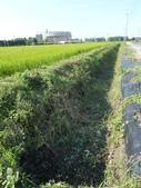明道大學農場實習:1702618857.jpg
