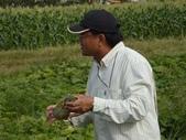 巨農有機農場實習:1598104110.jpg