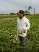 巨農有機農場實習:1598104111.jpg