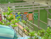 綠盈農場:1716706858.jpg