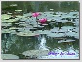 1.28前進Sigiriya:P1390183.jpg