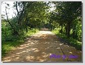 1.28前進Sigiriya:P1390161.jpg