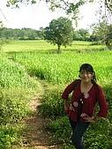 1.28前進Sigiriya:P1390165.jpg