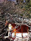 2011京都趴趴走DAY3:IMG_0407.JPG