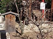 2011京都趴趴走DAY3:DSC05625.JPG