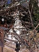 2011京都趴趴走DAY3:IMG_0408.JPG