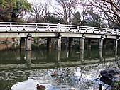 2011京都趴趴走DAY3:DSC05670.JPG