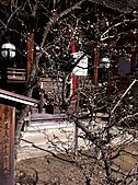 2011京都趴趴走DAY3:IMG_0409.JPG