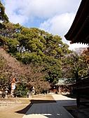 2011京都趴趴走DAY3:DSC05618.JPG