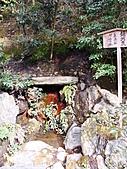 2011京都趴趴走DAY3:DSC05584.JPG