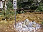 2011京都趴趴走DAY3:DSC05586.JPG