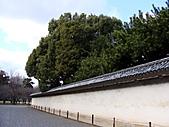 2011京都趴趴走DAY3:DSC05645.JPG