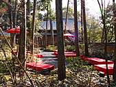 2011京都趴趴走DAY3:DSC05595.JPG