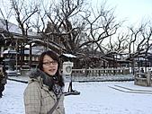 2011京都趴趴走DAY5:DSC05836.JPG