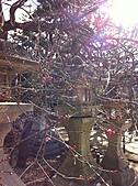 2011京都趴趴走DAY3:IMG_0412.JPG