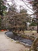 2011京都趴趴走DAY4:DSC05717.JPG
