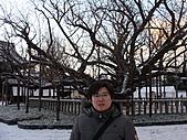 2011京都趴趴走DAY5:DSC05839.JPG