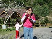 2007台中新社薰衣草森林:DSC00555