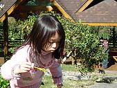 2007台中新社薰衣草森林:DSC00559
