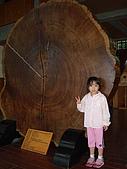 宜蘭之旅太平山200707:20070701 010